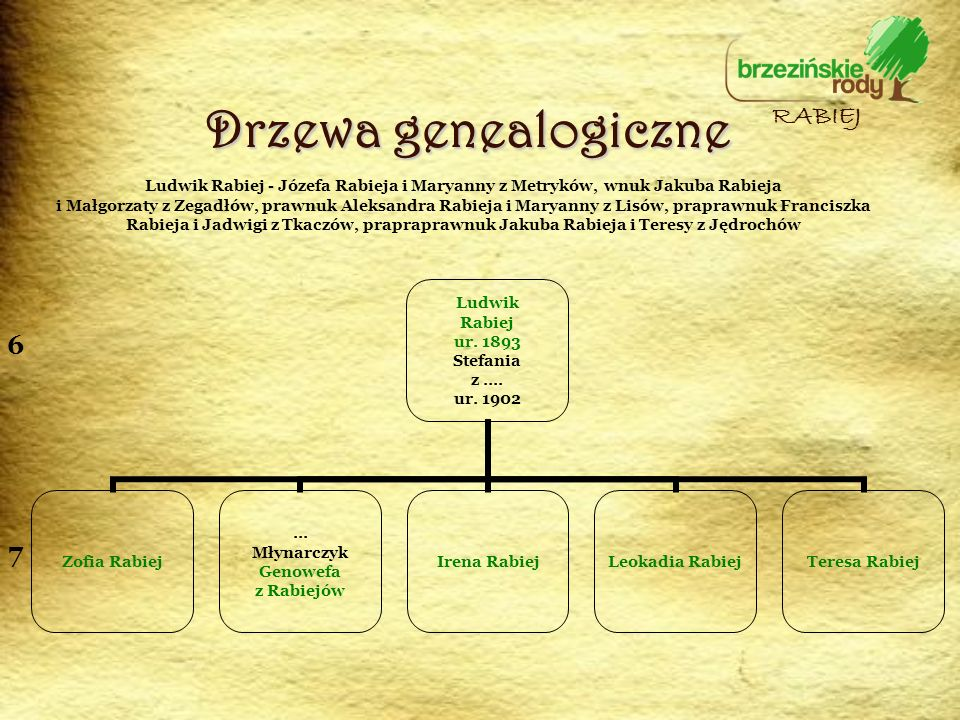 Drzewa genealogiczne RABIEJ 6 7