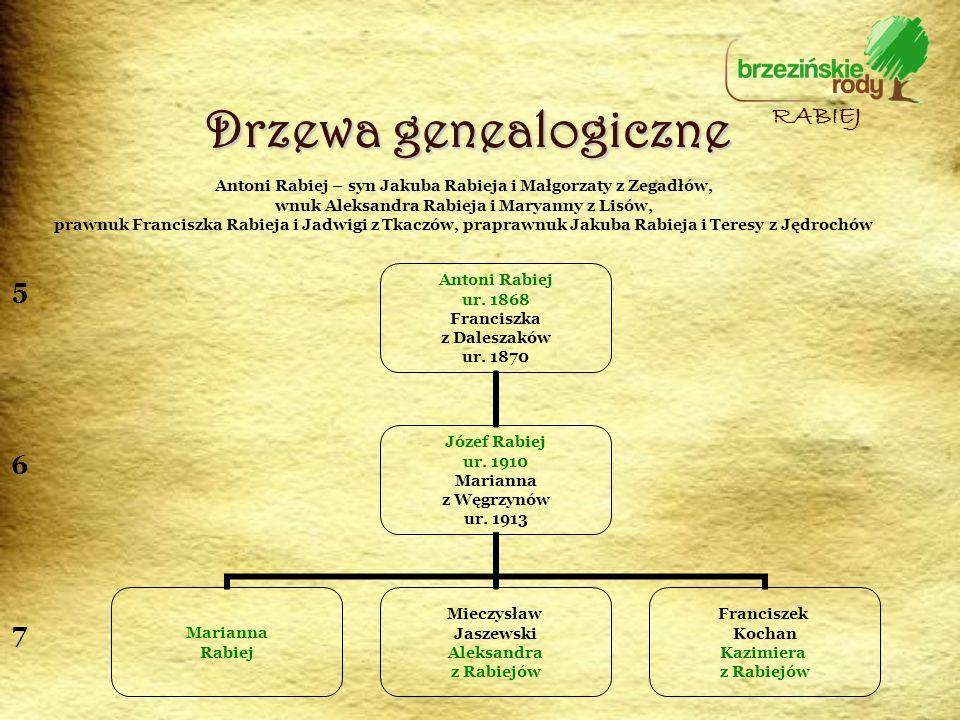 Drzewa genealogiczne RABIEJ 5 6 7