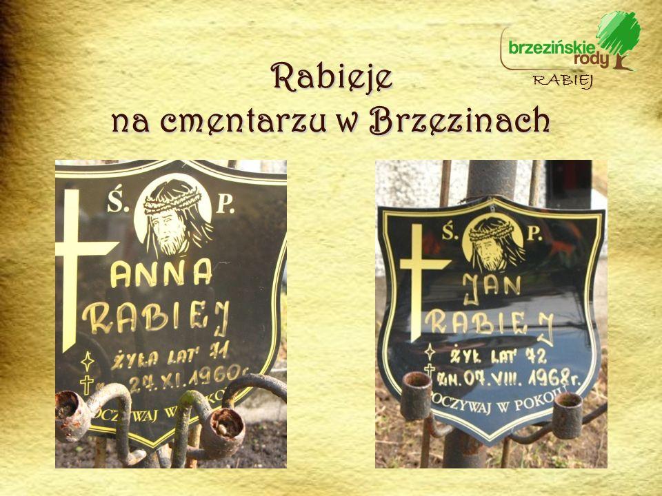 Rabieje na cmentarzu w Brzezinach