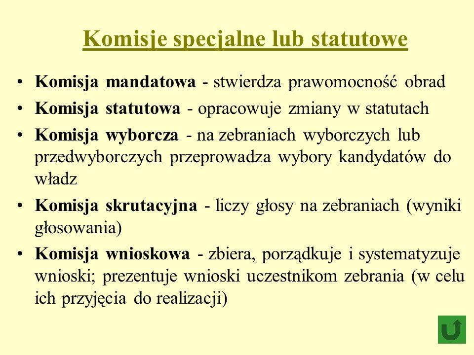 Komisje specjalne lub statutowe