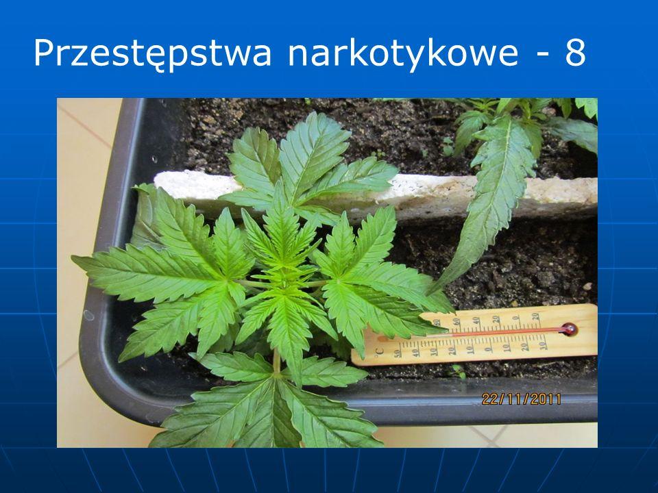 Przestępstwa narkotykowe - 8