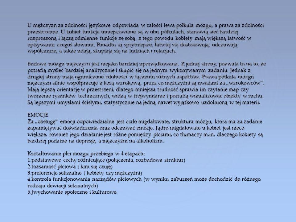 U mężczyzn za zdolności językowe odpowiada w całości lewa półkula mózgu, a prawa za zdolności przestrzenne.