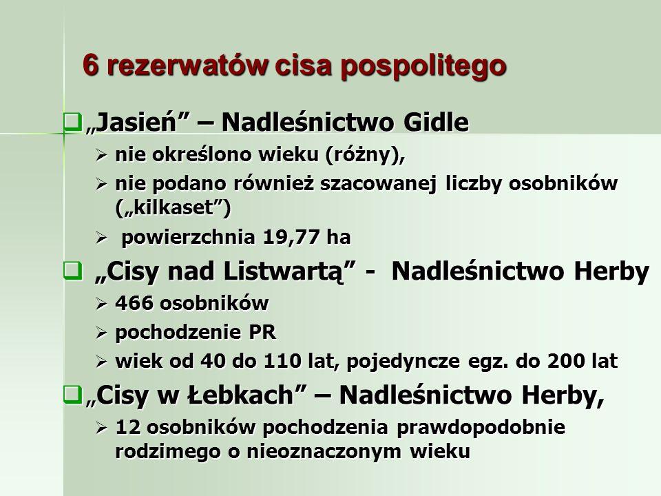 6 rezerwatów cisa pospolitego