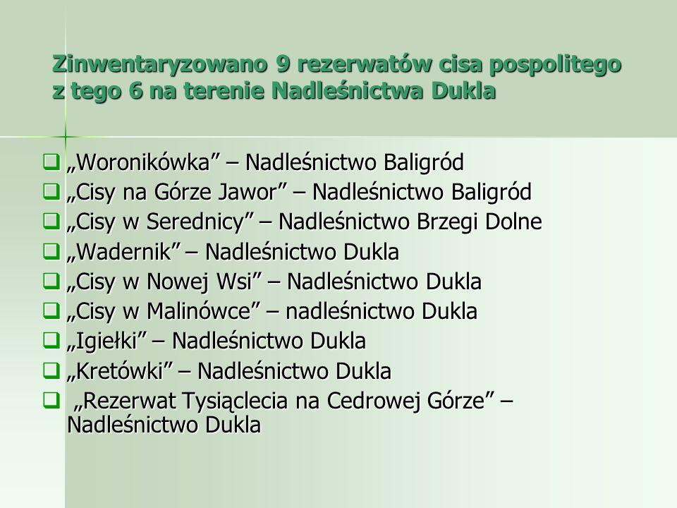 Zinwentaryzowano 9 rezerwatów cisa pospolitego z tego 6 na terenie Nadleśnictwa Dukla