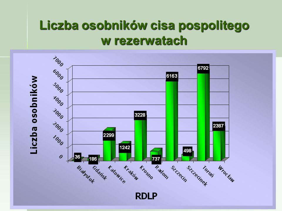 Liczba osobników cisa pospolitego w rezerwatach
