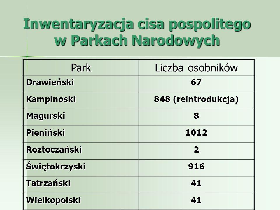 Inwentaryzacja cisa pospolitego w Parkach Narodowych