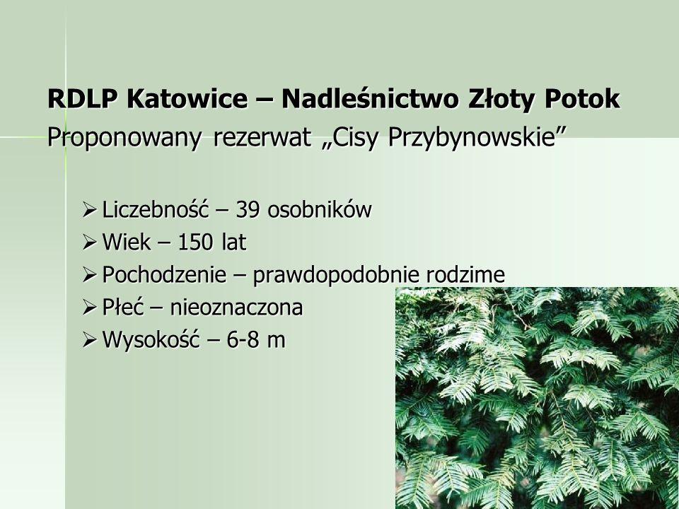 RDLP Katowice – Nadleśnictwo Złoty Potok