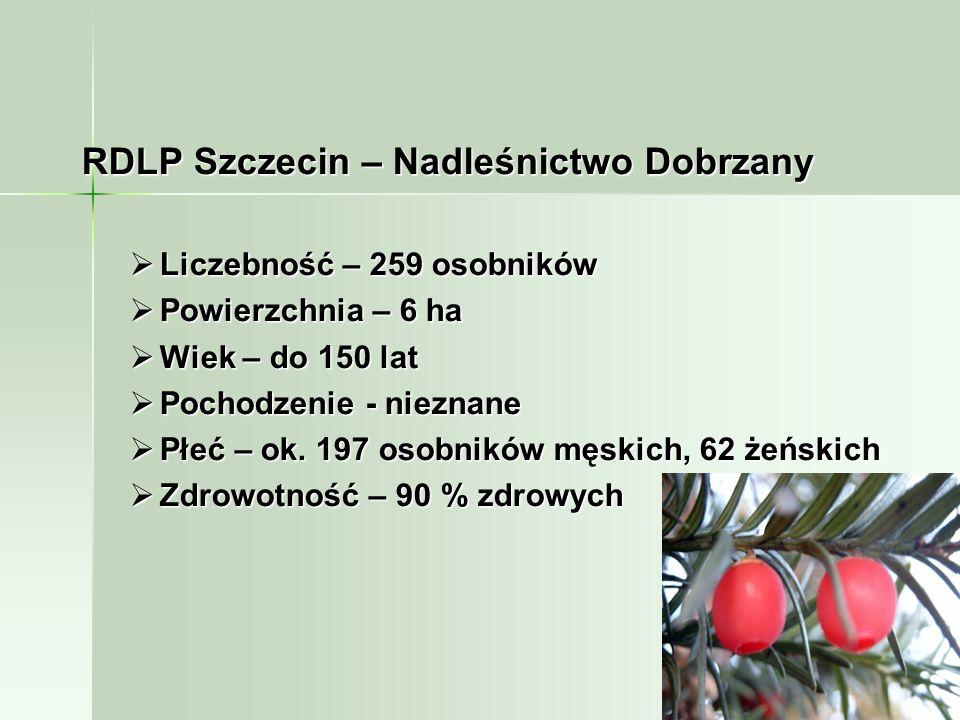 RDLP Szczecin – Nadleśnictwo Dobrzany