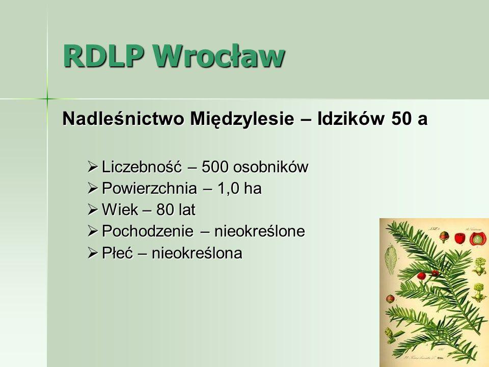 RDLP Wrocław Nadleśnictwo Międzylesie – Idzików 50 a