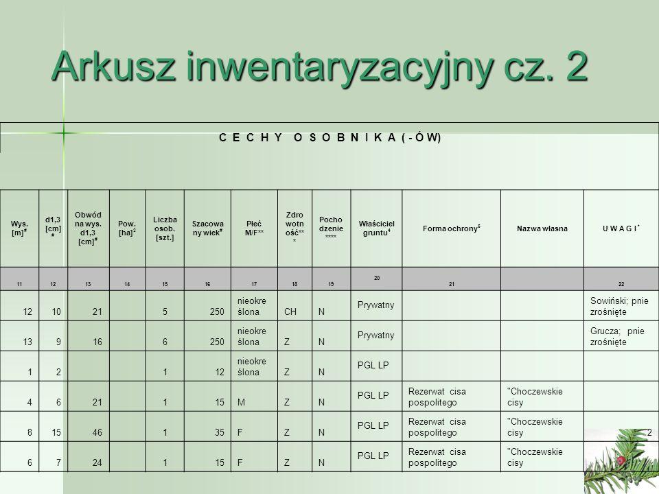 Arkusz inwentaryzacyjny cz. 2