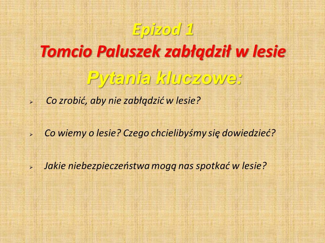 Tomcio Paluszek zabłądził w lesie