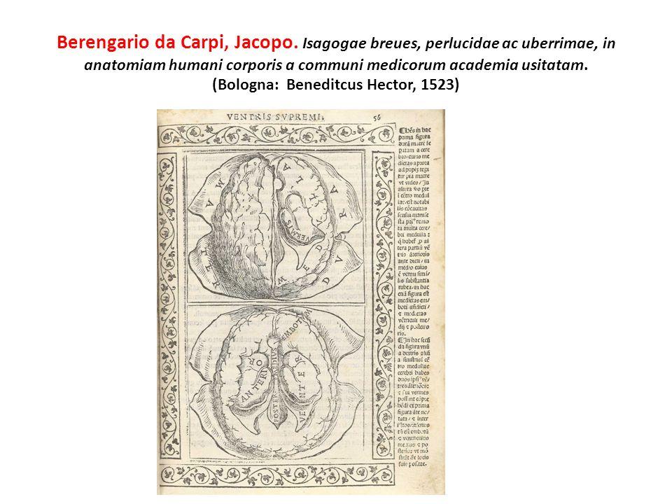 Berengario da Carpi, Jacopo