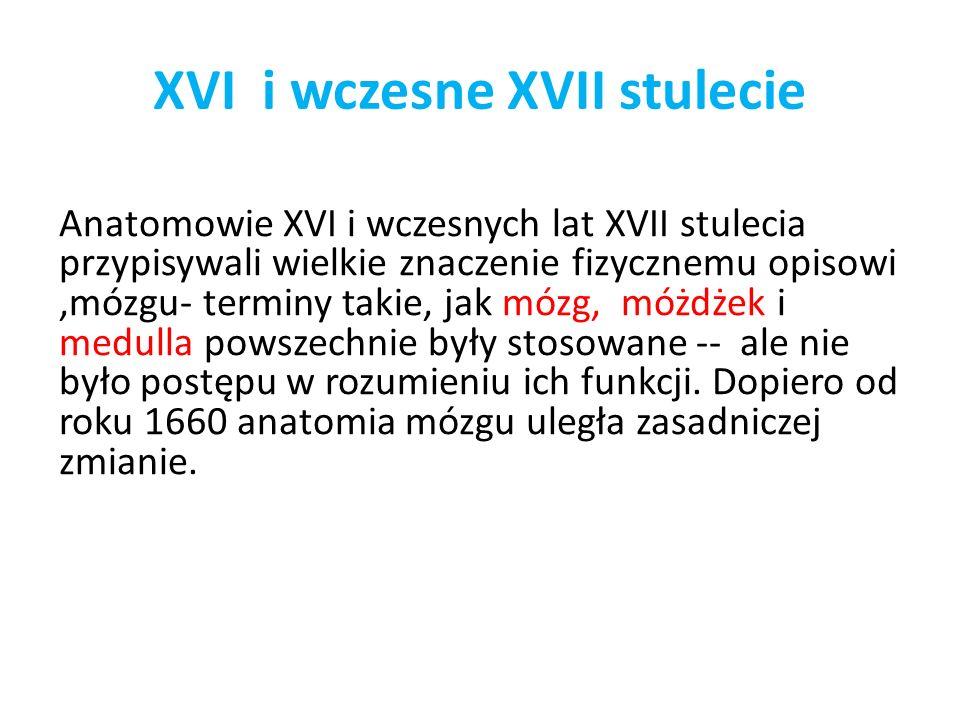XVI i wczesne XVII stulecie