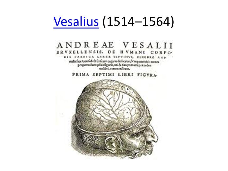 Vesalius (1514–1564)