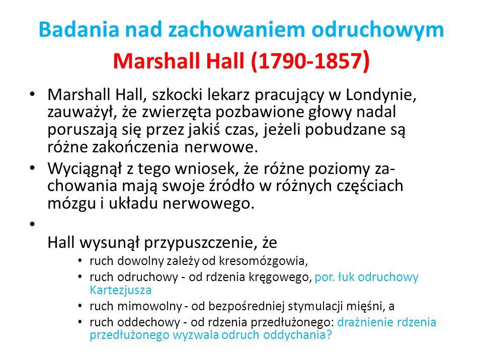 Badania nad zachowaniem odruchowym Marshall Hall (1790-1857)