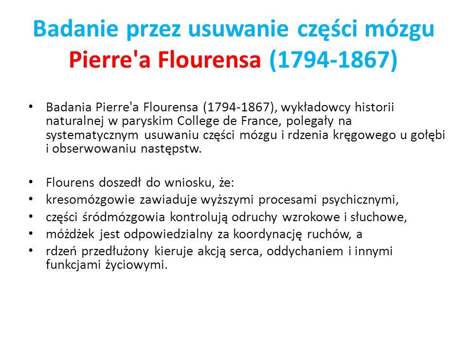 Badanie przez usuwanie części mózgu Pierre a Flourensa (1794-1867)