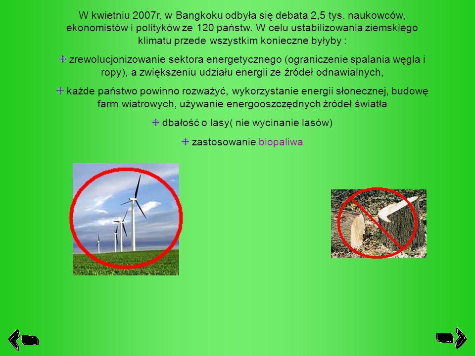 dbałość o lasy( nie wycinanie lasów) zastosowanie biopaliwa