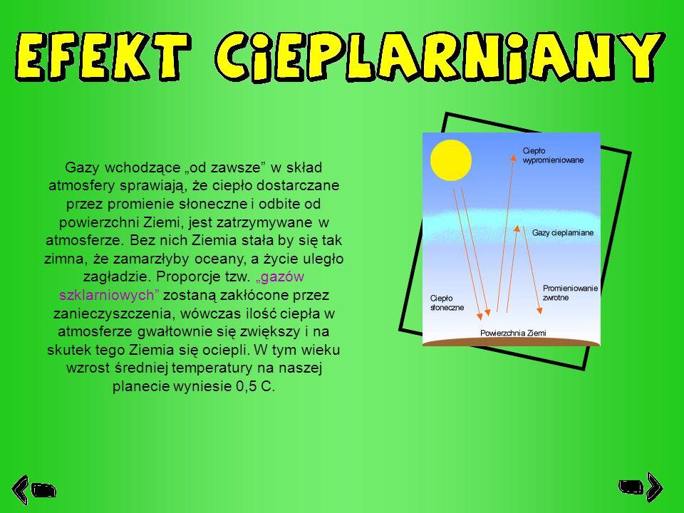 """Gazy wchodzące """"od zawsze w skład atmosfery sprawiają, że ciepło dostarczane przez promienie słoneczne i odbite od powierzchni Ziemi, jest zatrzymywane w atmosferze."""