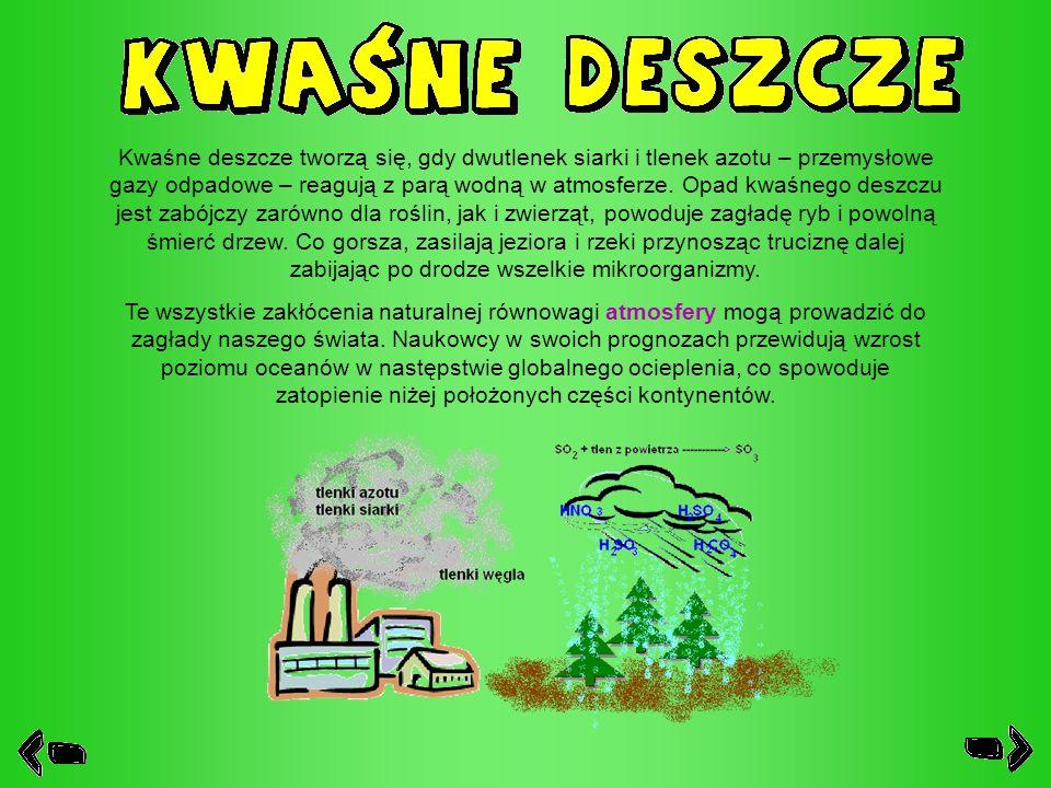 Kwaśne deszcze tworzą się, gdy dwutlenek siarki i tlenek azotu – przemysłowe gazy odpadowe – reagują z parą wodną w atmosferze. Opad kwaśnego deszczu jest zabójczy zarówno dla roślin, jak i zwierząt, powoduje zagładę ryb i powolną śmierć drzew. Co gorsza, zasilają jeziora i rzeki przynosząc truciznę dalej zabijając po drodze wszelkie mikroorganizmy.