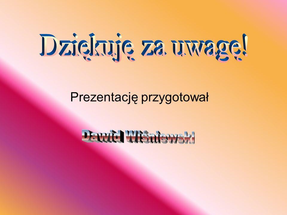Dziękuję za uwagę! Prezentację przygotował Dawid Wiśniewski