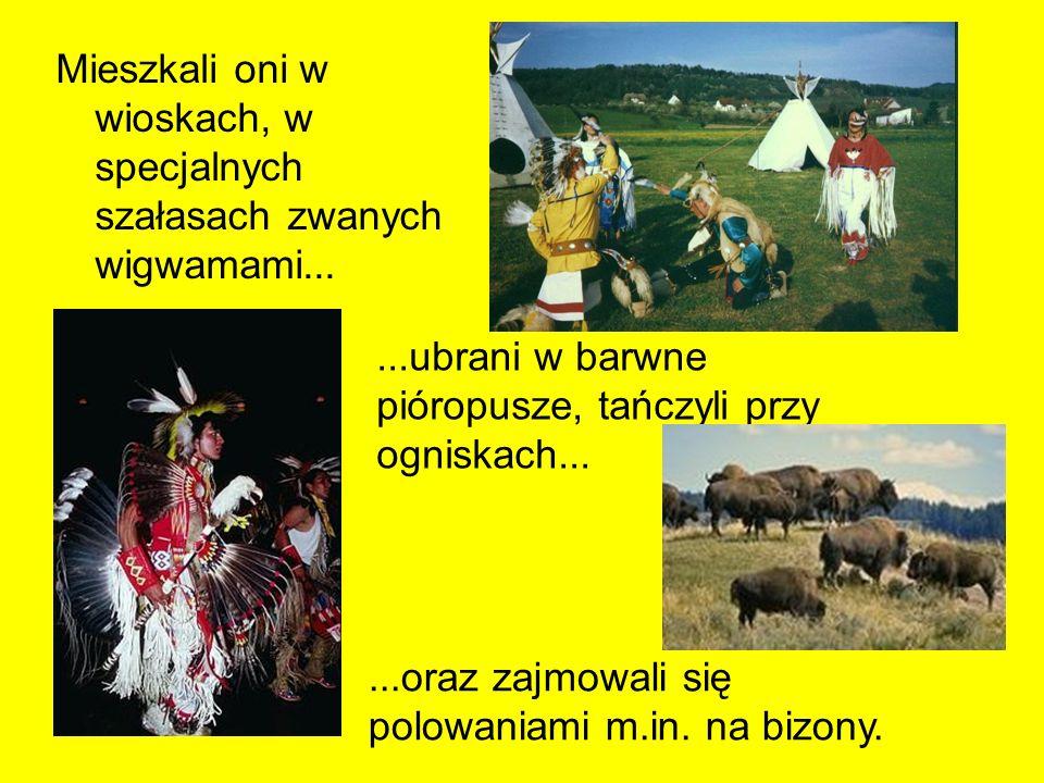 Mieszkali oni w wioskach, w specjalnych szałasach zwanych wigwamami...