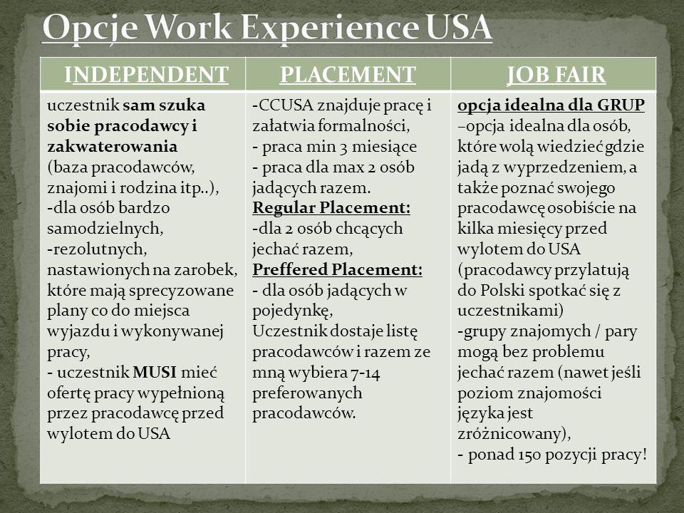 Opcje Work Experience USA