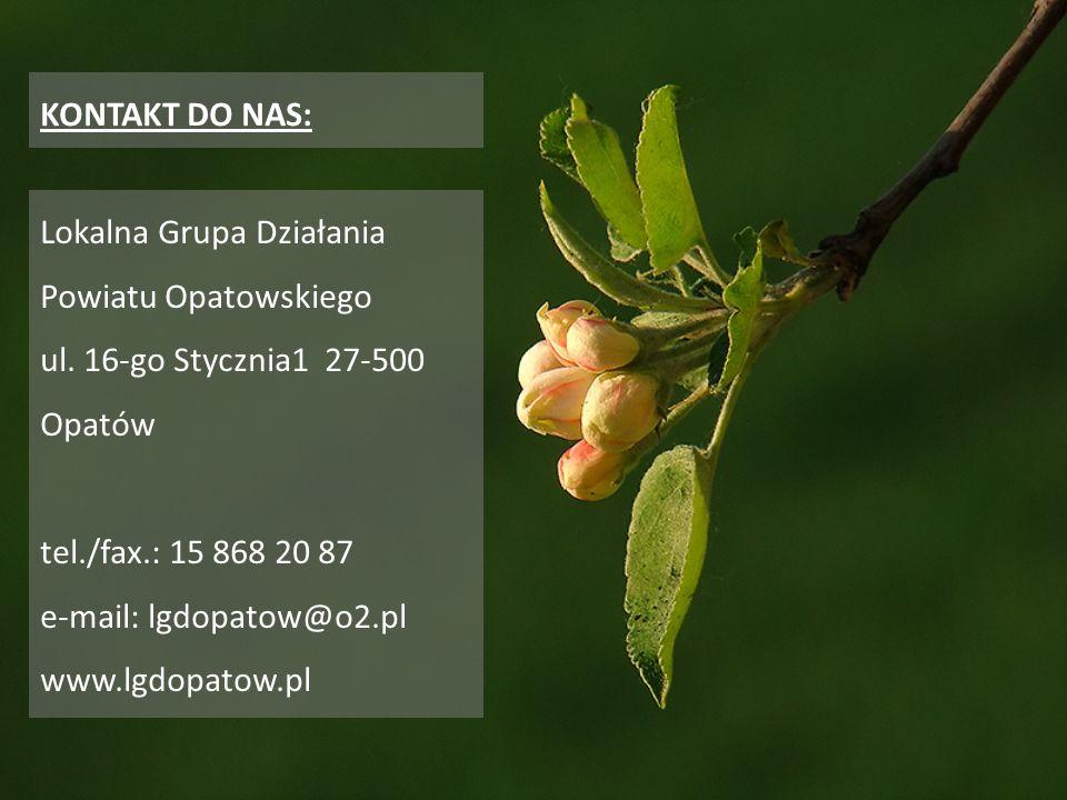 KONTAKT DO NAS: Lokalna Grupa Działania Powiatu Opatowskiego. ul. 16-go Stycznia1 27-500. Opatów.
