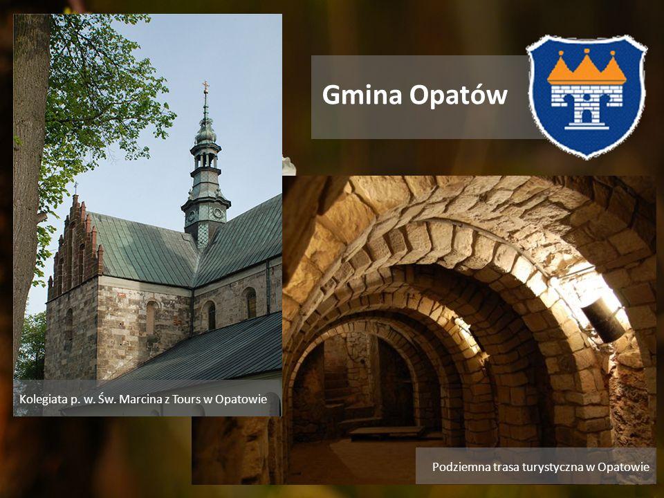 Gmina Opatów Kolegiata p. w. Św. Marcina z Tours w Opatowie