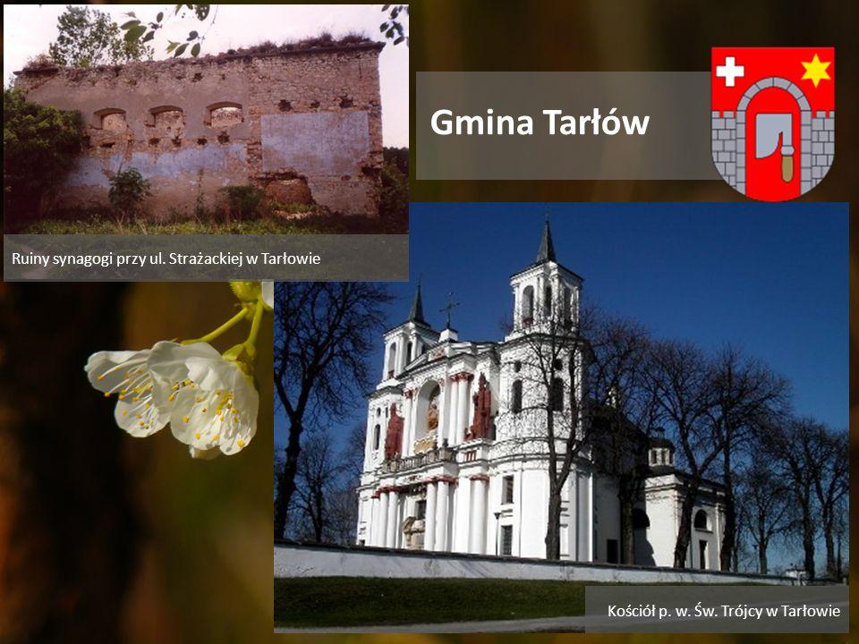 Gmina Tarłów Ruiny synagogi przy ul. Strażackiej w Tarłowie