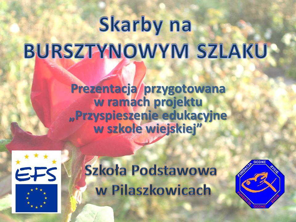 Skarby na BURSZTYNOWYM SZLAKU Szkoła Podstawowa w Pilaszkowicach