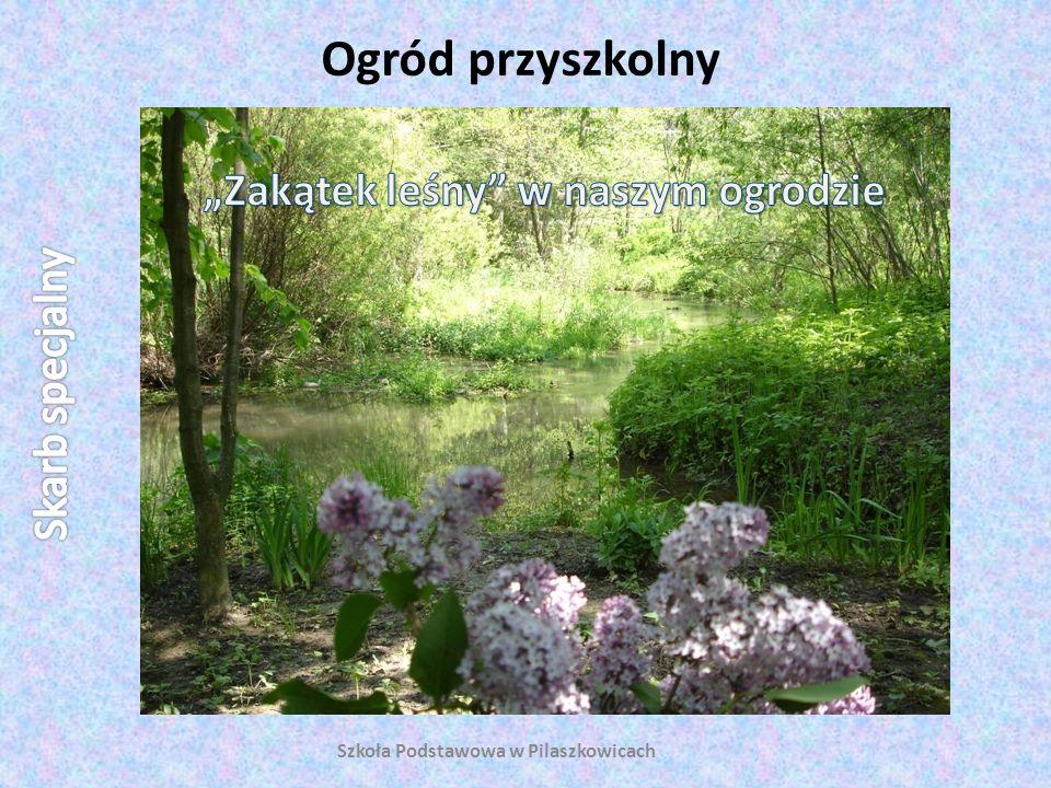 """""""Zakątek leśny w naszym ogrodzie Szkoła Podstawowa w Pilaszkowicach"""