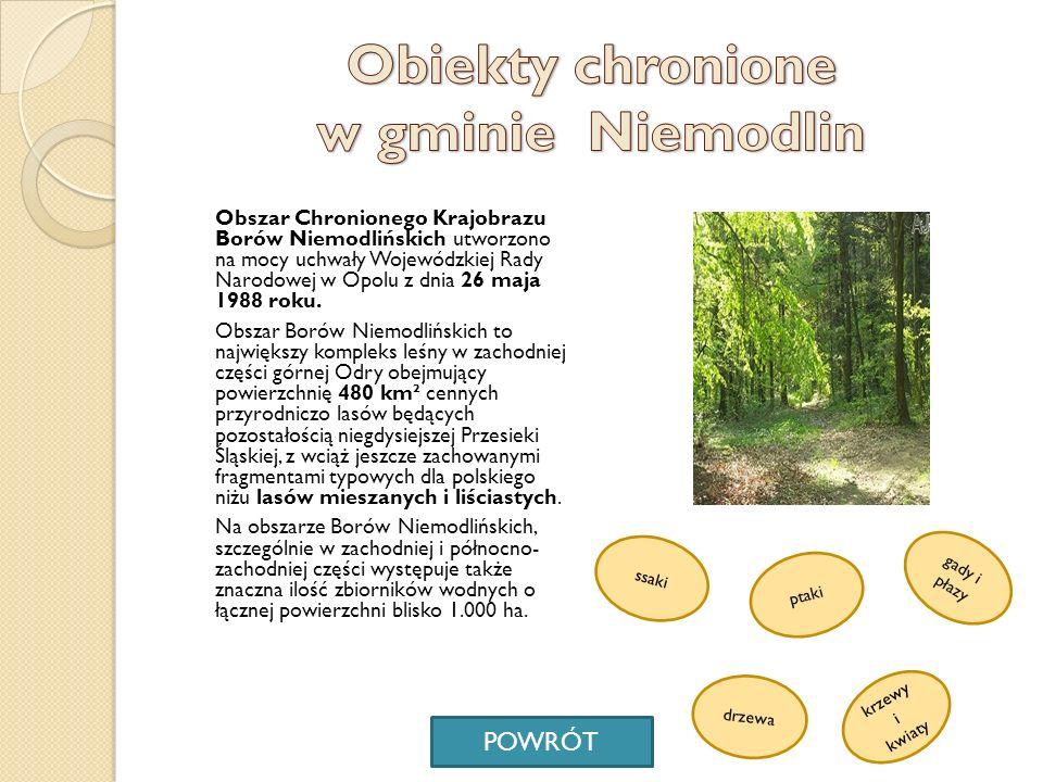 Obiekty chronione w gminie Niemodlin