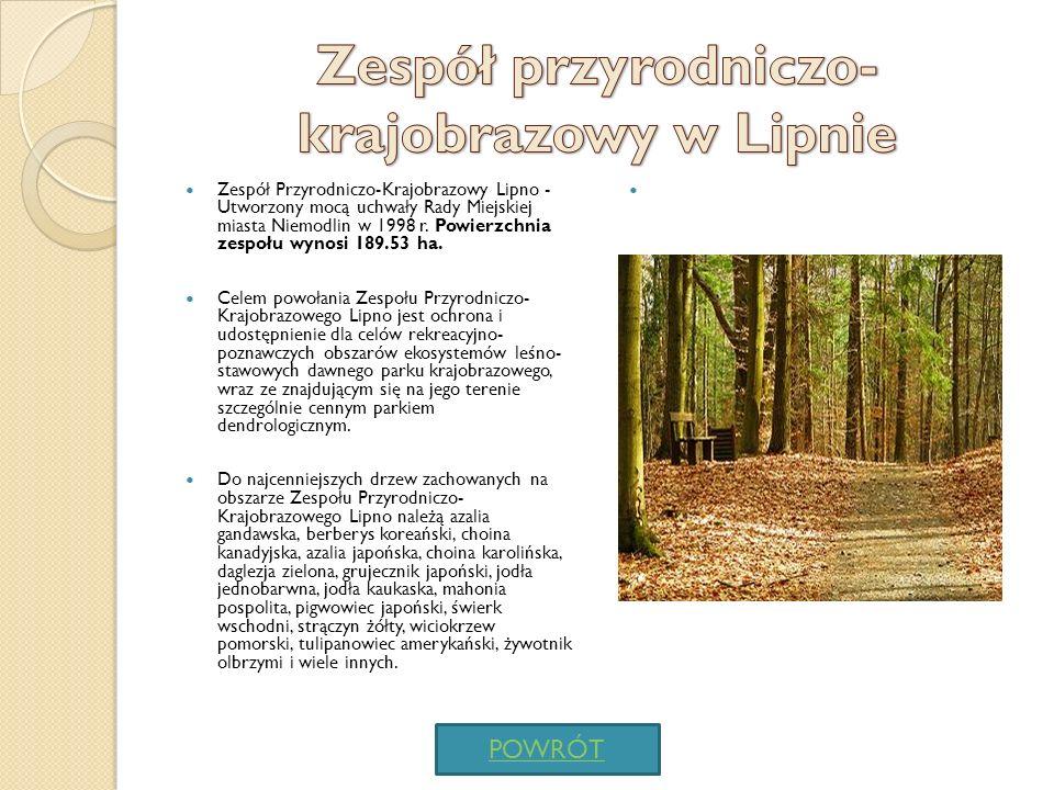 Zespół przyrodniczo-krajobrazowy w Lipnie