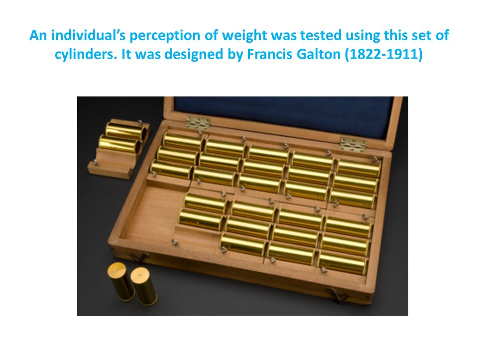 An individual's perception of weight was tested using this set of cylinders.