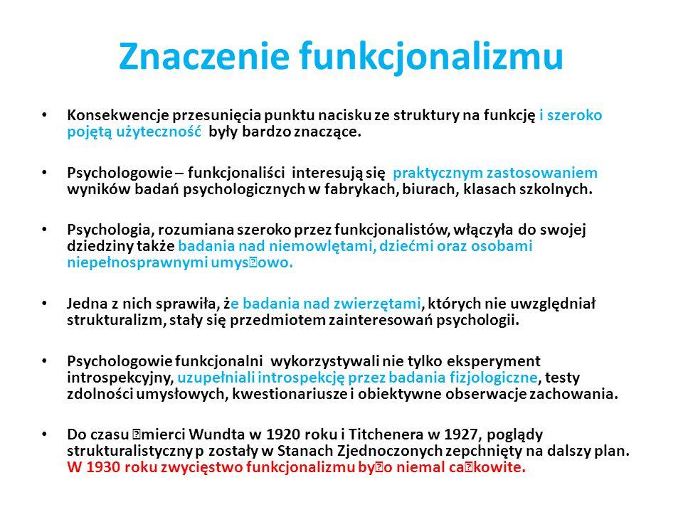 Znaczenie funkcjonalizmu