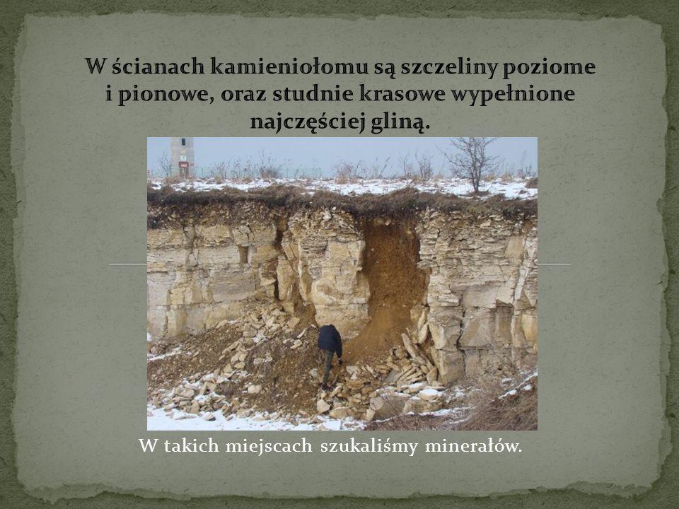 W takich miejscach szukaliśmy minerałów.