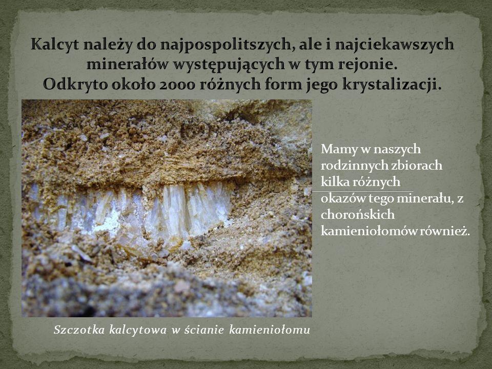 Szczotka kalcytowa w ścianie kamieniołomu