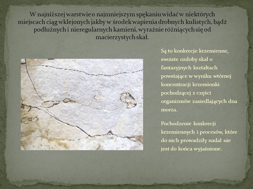 W najniższej warstwie o najmniejszym spękaniu widać w niektórych miejscach ciąg wklejonych jakby w środek wapienia drobnych kulistych, bądź podłużnych i nieregularnych kamieni, wyraźnie różniących się od macierzystych skał.