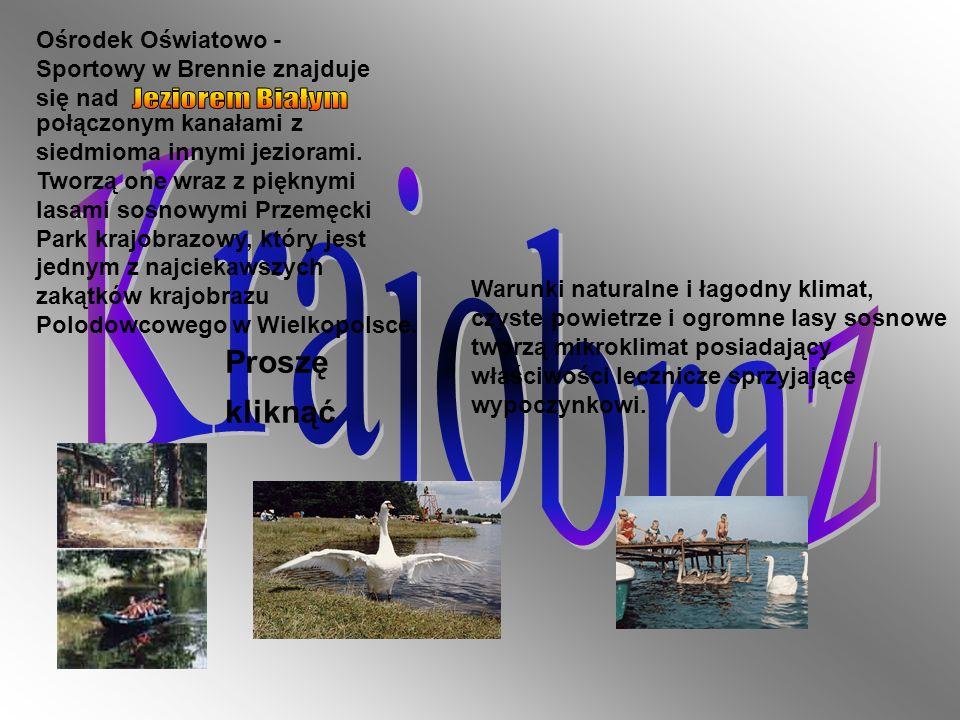 Krajobraz Jeziorem Białym Krajobraz Proszę kliknąć