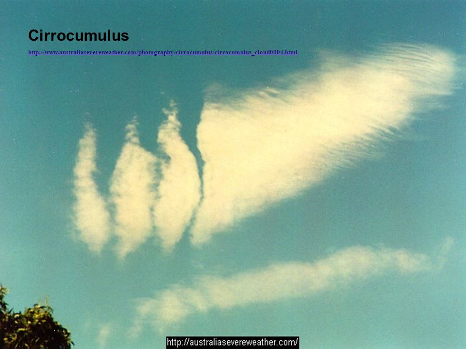 Cirrocumulus http://www.australiasevereweather.com/photography/cirrocumulus/cirrocumulus_cloud0004.html.