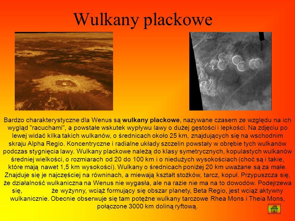 Wulkany plackowe