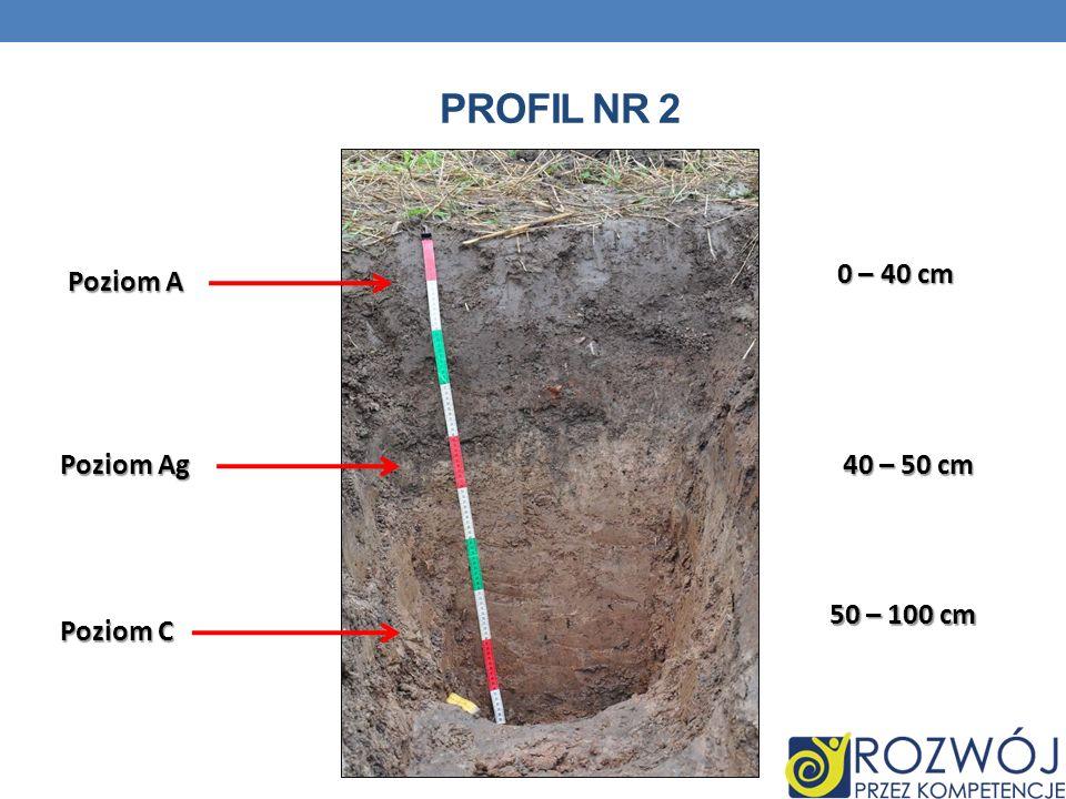Profil nr 2 0 – 40 cm Poziom A Poziom Ag 40 – 50 cm 50 – 100 cm