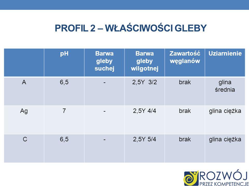 Profil 2 – właściwości gleby