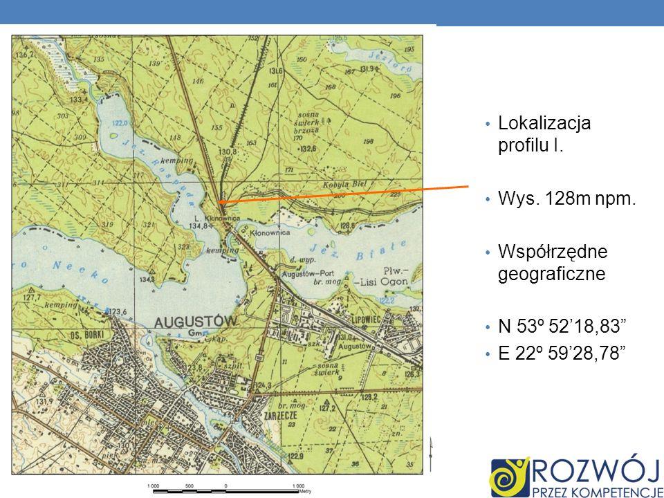 Lokalizacja profilu I. Wys. 128m npm. Współrzędne geograficzne N 53º 52'18,83 E 22º 59'28,78