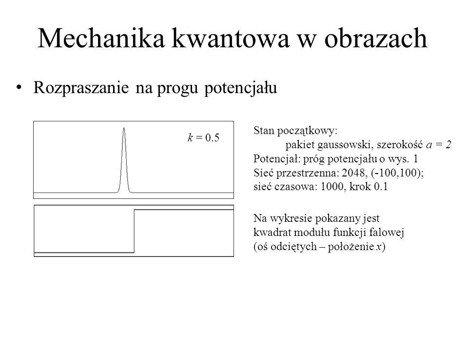 Mechanika kwantowa w obrazach
