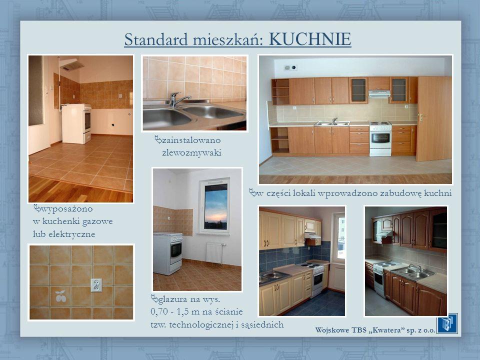 Standard mieszkań: KUCHNIE