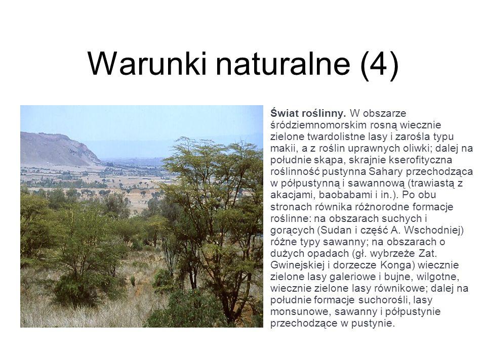Warunki naturalne (4)