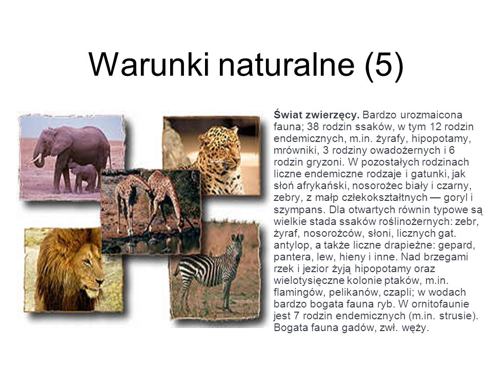 Warunki naturalne (5)