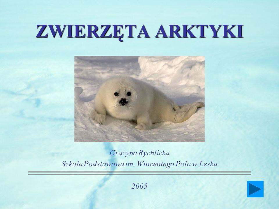Grażyna Rychlicka Szkoła Podstawowa im. Wincentego Pola w Lesku 2005