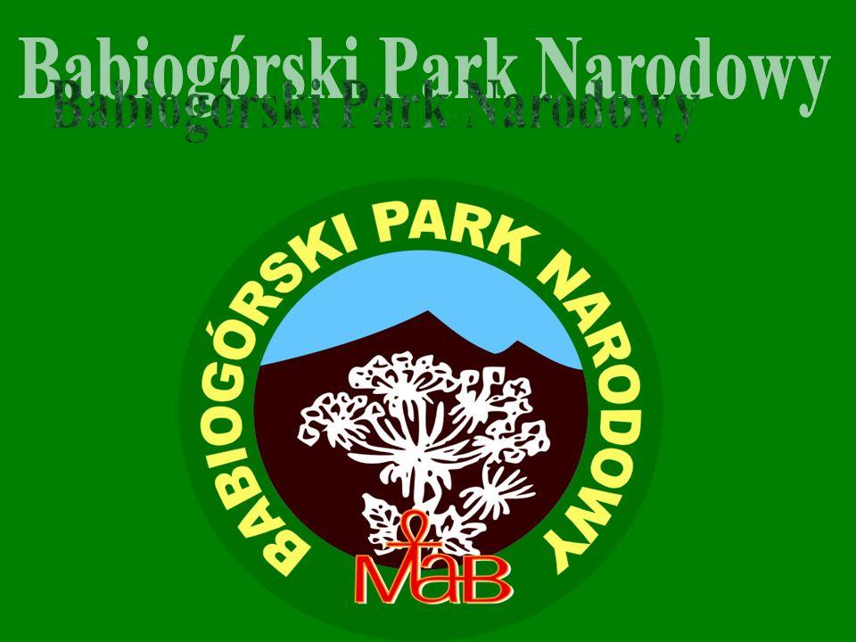 Babiogórski Park Narodowy